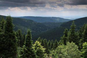Thüringer Wald Gotha
